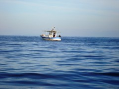 Ξύλινο Αλιευτικό
