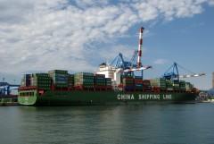 Xin Chi Wan