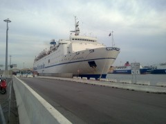 Ferry FLAMINIA in Bari