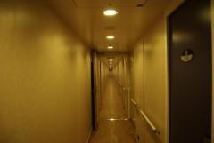 Cruise Olympia - Cabin Corridor