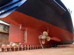 RODANTHI - Rudder and propeller