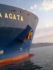 Histria Agata
