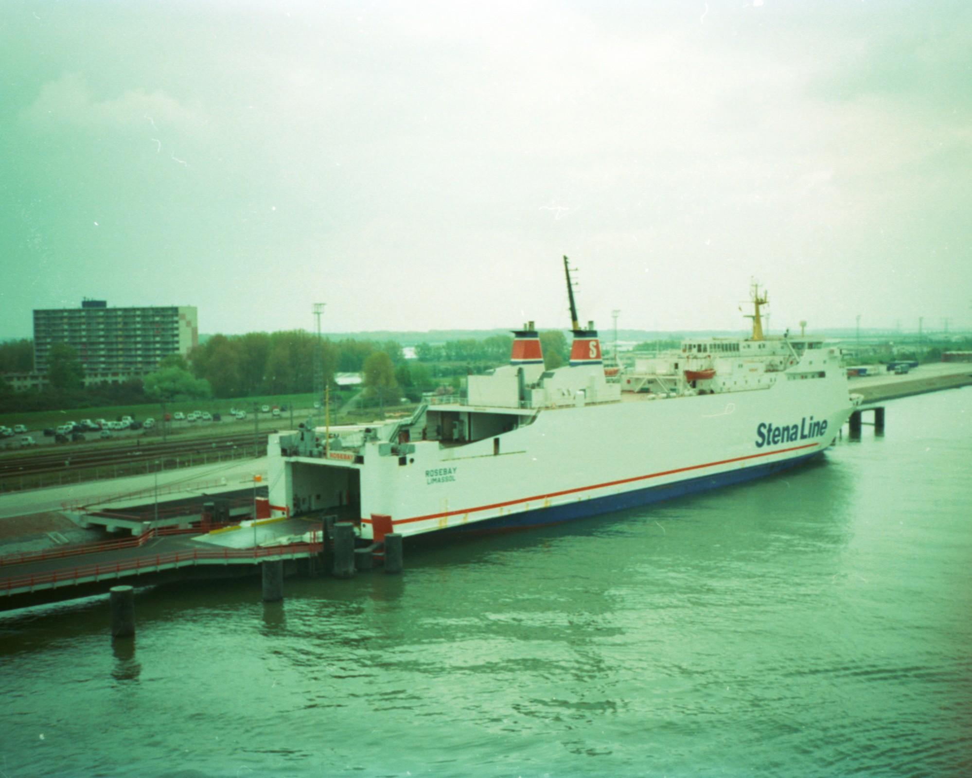Rosebay in Rotterdam