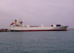 marin patra 210407