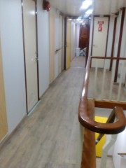 pelagitis interior 04052016
