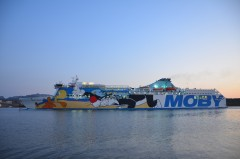 Moby Tommy in Olbia