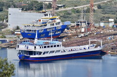 Agios Georgios Aid_Nikitis_10-02-19_Ambelaki Salaminas