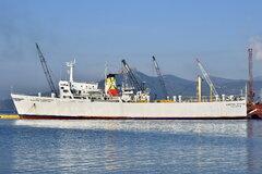 Kapetan Christos_10-02-19_Eleusis_22