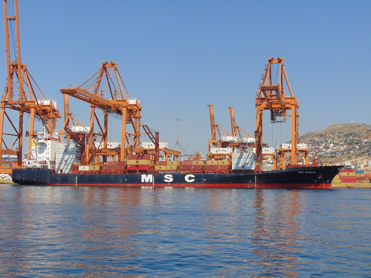 MSC Shirley