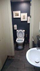 Vikentios Damodos_toilet