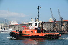Tugs in Italy
