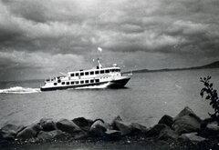 Delfini Express