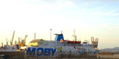 MOBY BABY TWO at Piombino