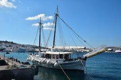 Dolphins of Delos_12-09-21_Mykonos